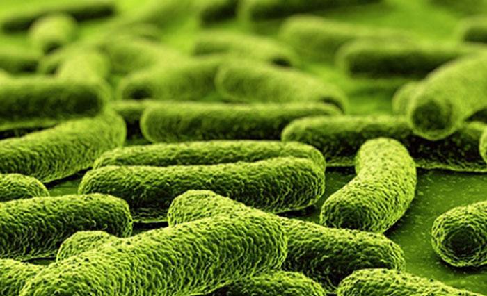 Test per la valutazione della tubercolosi